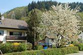 Haus Belchenherz | 400-1.400 m ü. NN