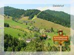 Daislehof | 700 m ü. NN