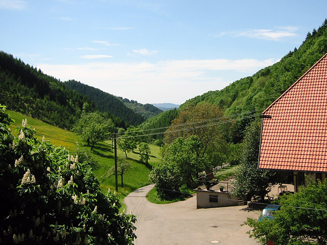 Friedershof   300-945 m ü. NN