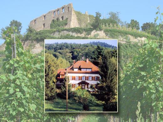 Haus Kaltenbach   284 m ü. NN