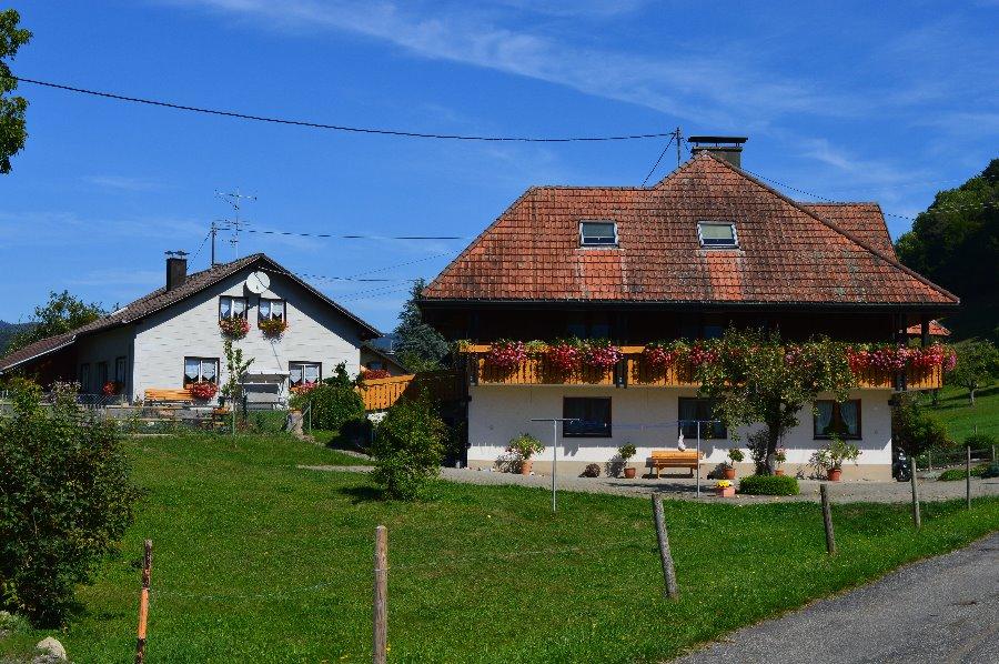 Haus Rümmele | 554 m ü. NN