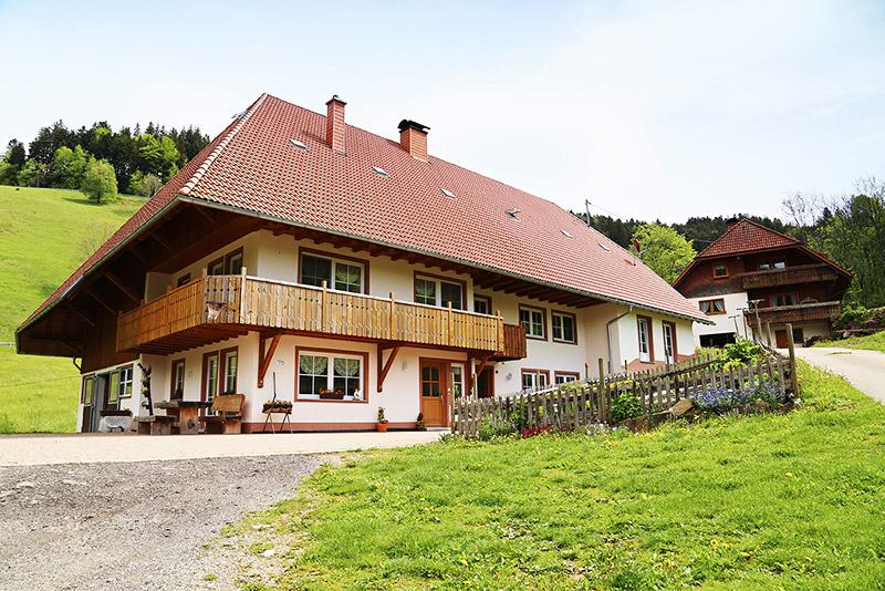 Hogenhof   800 m ü. NN