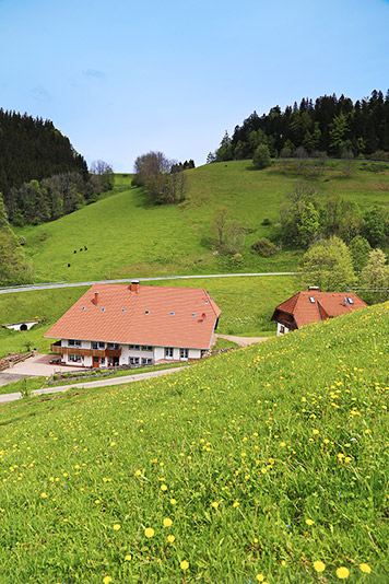 3-Zimmer-Ferienwohnung: Dreschtenne :: 85 m²
