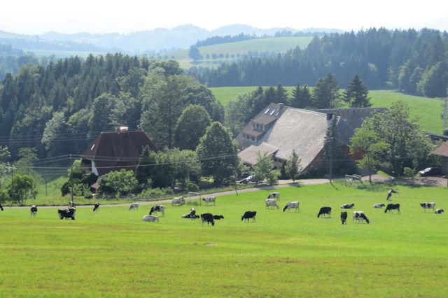 Pfisterhof | 570-1.132 m ü. NN