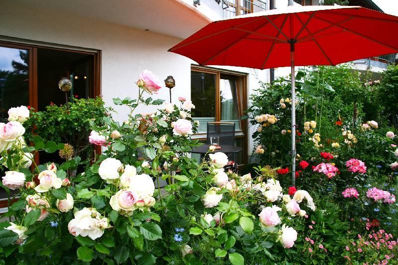 Appartement Rosengarten | 284 m ü. NN