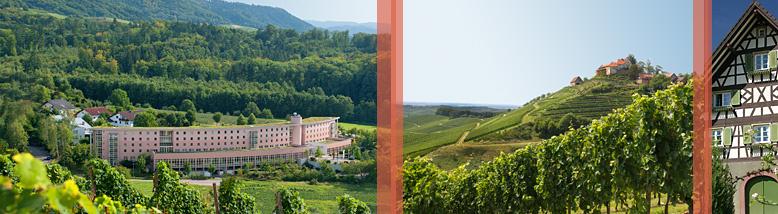 BEST WESTERN PLUS Hotel Vier Jahreszeiten Durbach | 208 m ü. NN