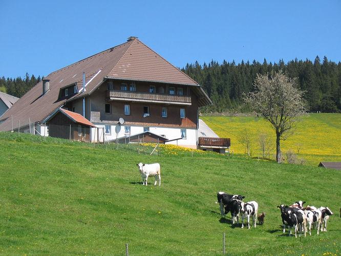 Vogtsjockelshof | 1.000 m ü. NN