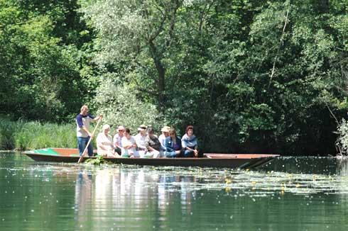 Bootsfahrten im Taubergießen, dem letzten Urwald am Oberrhein