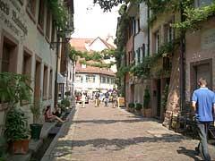 Freiburg Hinterstadt