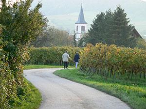 Staufen-Grunern im Breisgau