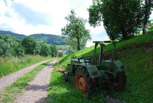 Freiamt im Naturpark Südschwarzwald