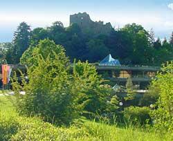 Blick auf die Burg in Badenweiler
