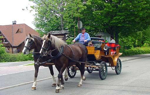 Kutscher in Lenzkirch