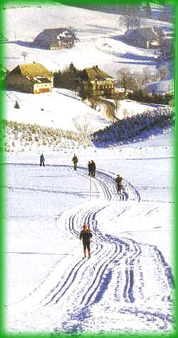 Ski-Langlauf in Bernau im Schwarzwald