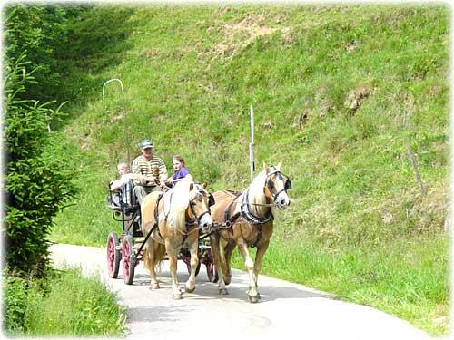 Breitnau Schwarzwald