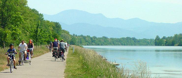 Radtour am Altrhein mit Blick auf den Schwarzwald