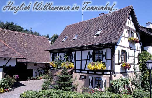 Haus Tannenhof | 500 m ü. NN