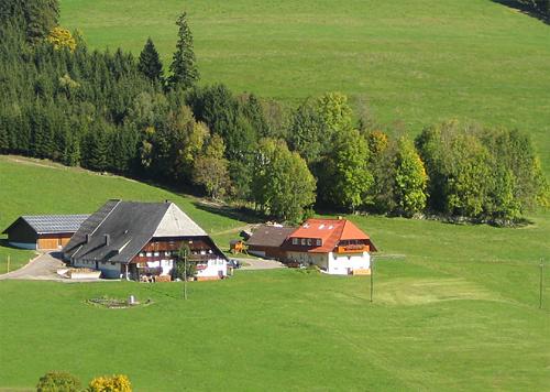 Hanisenhof   840-860 m ü. NN