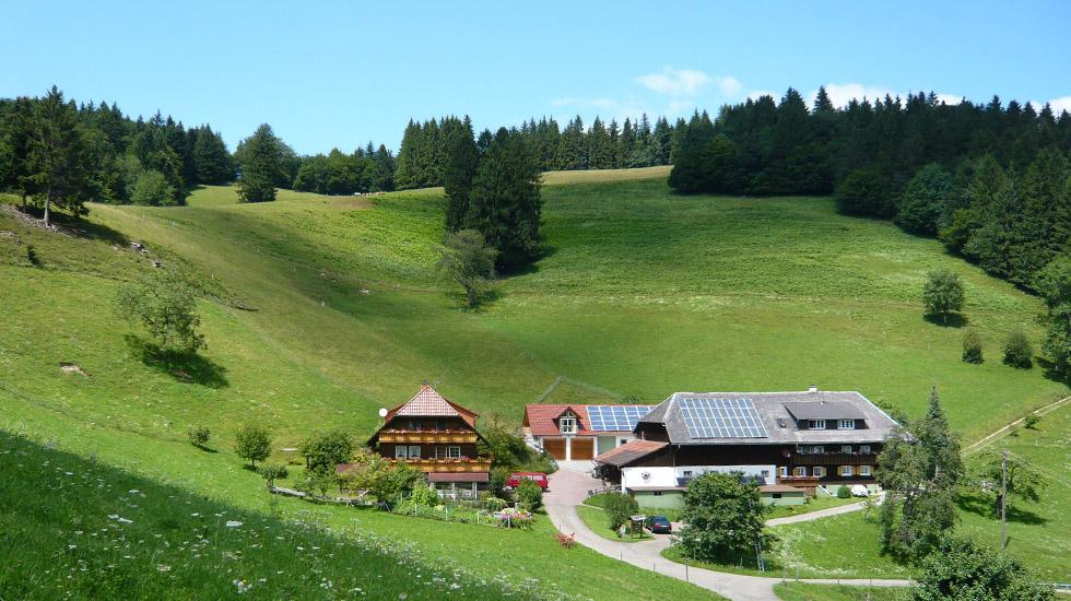 Gipfhof | 700 m ü. NN