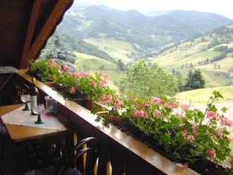 1-Zimmer-Ferienwohnung: Bauerngarten :: 27 m²