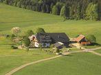 Gschwinghof | 800 m ü. NN