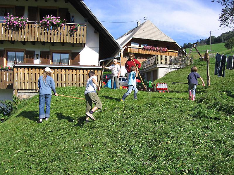 Harzlochhof Bauernhof 79244 Munstertal Breisgau Schwarzwald