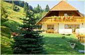 Haus Limberg | 520 m ü. NN