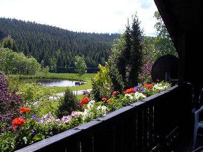 Landhaus Flora | 1.000 m ü. NN