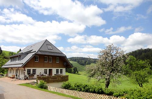 Mooshof | 800 m ü. NN