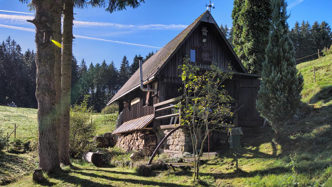 Mühle am Wolfsgrund   815 m ü. NN