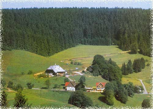 "Landgasthof ""Pauli-Wirt""   950 m ü. NN"
