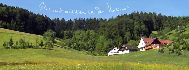 Stinneshof | 300-945 m ü. NN