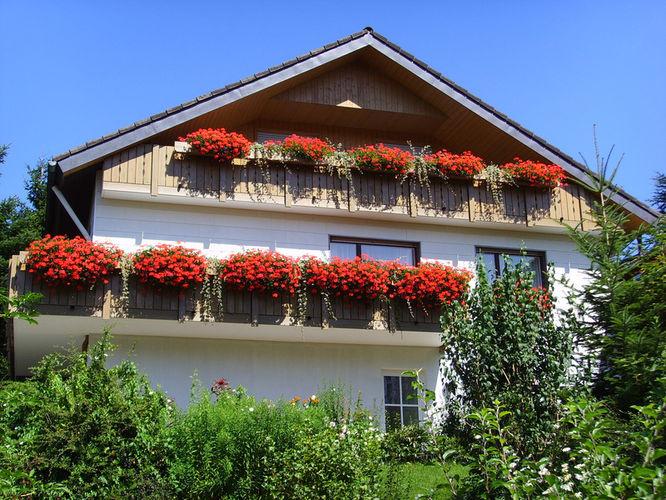 Haus Vogelsang | 800 m ü. NN
