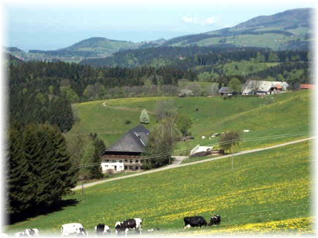Willmannshof | 800 m ü. NN
