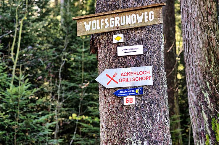 Wandern in Unterkirnach im Schwarzwald