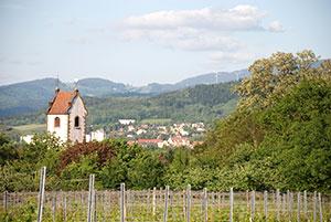 Staufen-Wettelbrunn im Breisgau