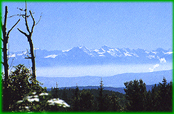 Blick auf die Alpen von Bernau im Schwarzwald