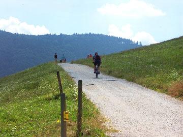 Mountainbiking im Schwarzwald